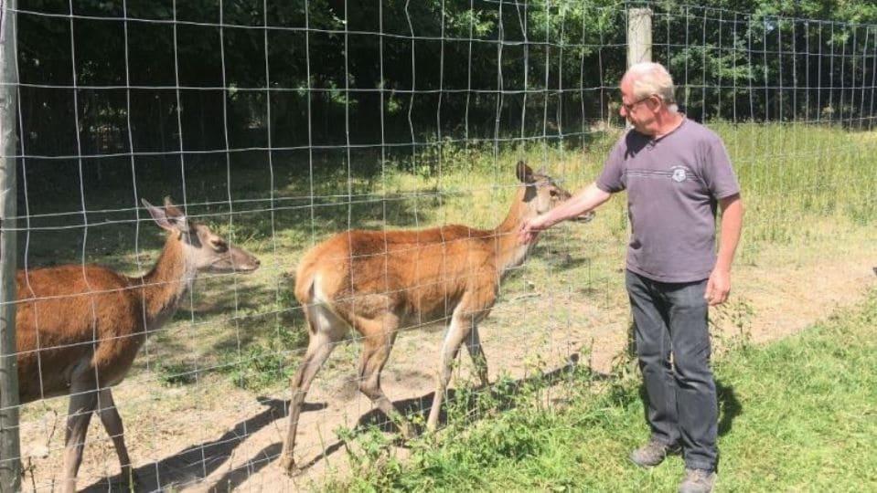 Центр охраны диких животных в Нормандии