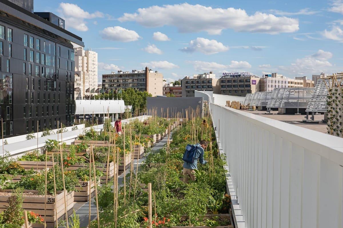 В Париже самая большая городская ферма